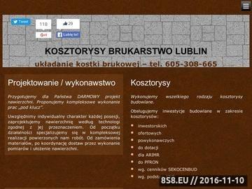 Zrzut strony PTB SEBRUK - roboty drogowe, marketing Internetowy, kosztorysy budowlane