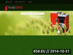 Miniaturka domeny seko.pl