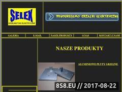 Miniaturka domeny www.selex.org.pl