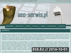 Miniaturka domeny www.seo-serwis.pl