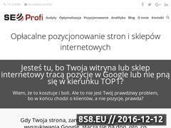 Miniaturka domeny www.seokrakow.pl