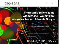 Miniaturka www.seonidas.pl (Pozycjonowanie stron, marketing internetowy i SEO)