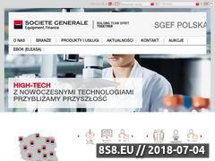Miniaturka domeny sgef.pl