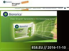 Miniaturka domeny sinupret.com.pl