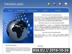 Miniaturka domeny skandland.pl