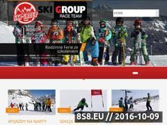 Miniaturka domeny www.ski-group.pl