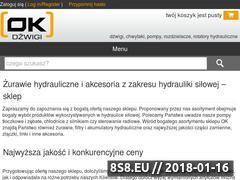 Miniaturka sklep.dzwigi.net.pl (Pompy hydrauliczne oraz rozdzielacze hydrauliczne)