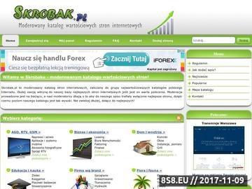 Zrzut strony Skrobak.pl - katalog stron
