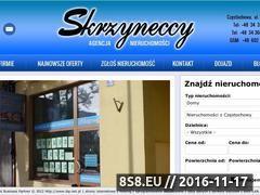 Miniaturka domeny www.skrzyneccy.pl