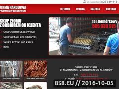 Miniaturka domeny www.skup-zlomu.net