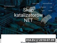 Miniaturka skupkatalizatorow.net (Katalizatory - skup)