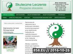 Miniaturka domeny www.skuteczne-leczenie.pl