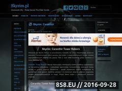 Miniaturka skyrim.pl (Serwis o grach The Elder Scrolls)