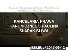 Miniaturka domeny slapak-sliwa.com
