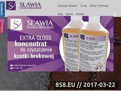 Miniaturka domeny slawia.pl