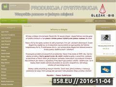 Miniaturka www.slezakbis.pl (Pomoce szkolne - pomoce dydaktyczne)