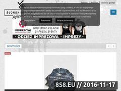 Miniaturka domeny slonskidizajn.pl