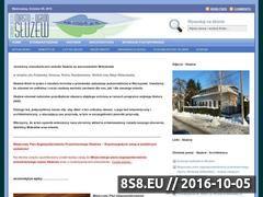Miniaturka www.sluzew.org.pl (Informacje o architekturze)