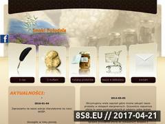 Miniaturka domeny www.smakipoludnia.pl