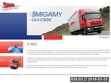 Zrzut strony Śmig - międzynarodowy transport towarów