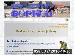 Miniaturka domeny sopicki.pl