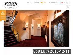 Miniaturka domeny www.spatz.pl