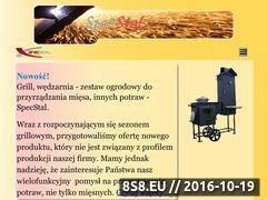 Miniaturka domeny specstal.pl