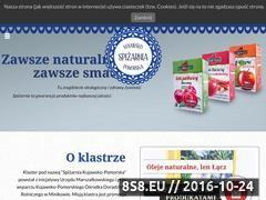 Miniaturka domeny spizarniakujawskopomorska.pl
