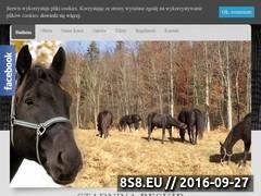 Miniaturka domeny stajniabeskid.pl