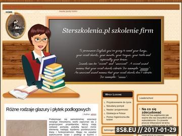 Zrzut strony Szkolenia marketingowe Sterszkolenia.pl