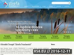 Miniaturka domeny www.strefatrzezwosci.pl
