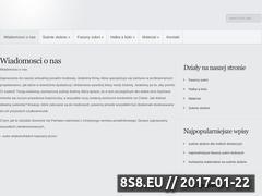 Miniaturka domeny suknieslubne-slawa.pl