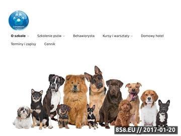 Zrzut strony Szkolenie psów Warszawa, psie przedszkole