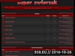 Miniaturka domeny www.superzwierzak.com.pl