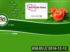 Miniaturka domeny www.sur-tum.pl