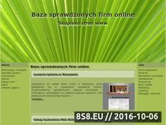 Miniaturka domeny suzukigs.pl
