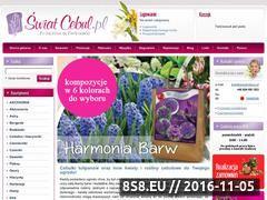 Miniaturka domeny www.swiatcebul.pl