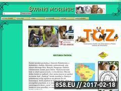 Miniaturka domeny swinka.vot.pl