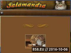 Miniaturka domeny www.syberyjskie-salamandra.pl