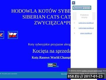 Zrzut strony Zwycięzca*PL - hodowla kotów syberyjskich, kot syberyjski, koty syberyjskie