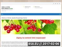 Miniaturka szkola-kalina.pl (Kursy języka rosyjskiego)