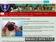 Miniaturka domeny www.szkoladlapsa.eu