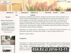 Miniaturka domeny szyfoniera.com.pl