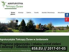 Miniaturka tanczacyzuraw.pl (Noclegi Jordanowo oraz nocleg Jordanowo)