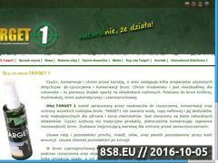 Miniaturka domeny target1.pl