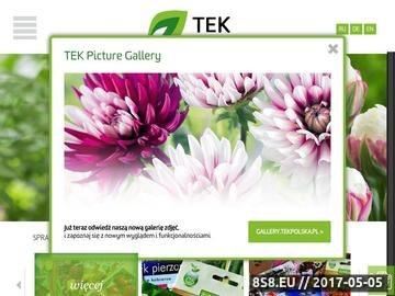Zrzut strony Drukarnia TEK - producent opakowań