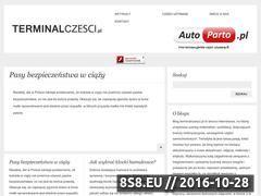 Miniaturka domeny www.terminalczesci.pl