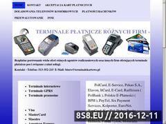 Miniaturka domeny terminale-broker.pl