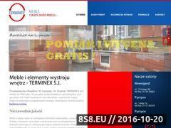 Miniaturka domeny www.terminex-meble.pl