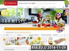 Miniaturka domeny www.termisil.com